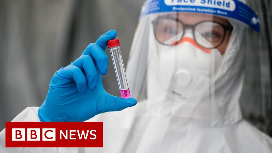 Coronavirus: WHO records highest global cases in 24 hours – BBC News