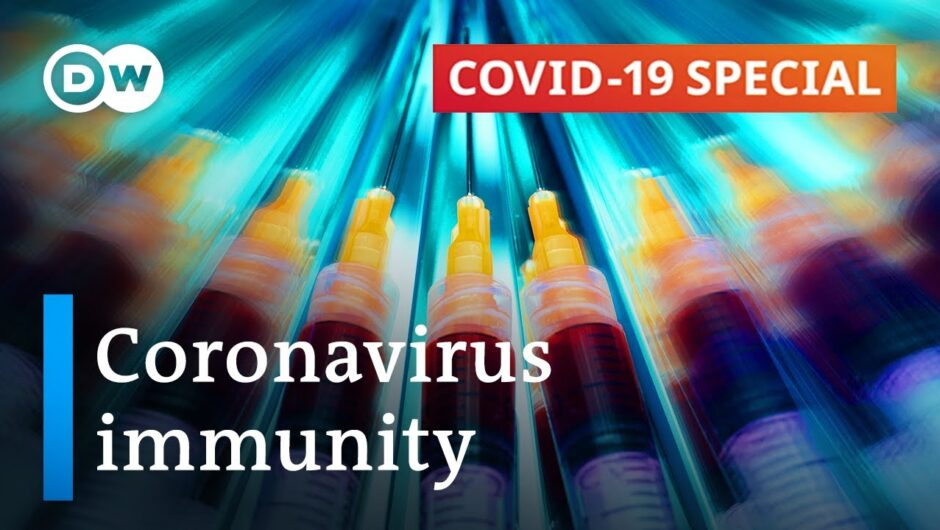 Coronavirus immunity: What do we know? | COVID-19 Special