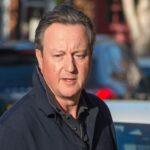 David Cameron repeatedly lobbied Bank of England for coronavirus cash