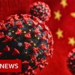The Covid-19 disinformation tactics used by China – BBC News